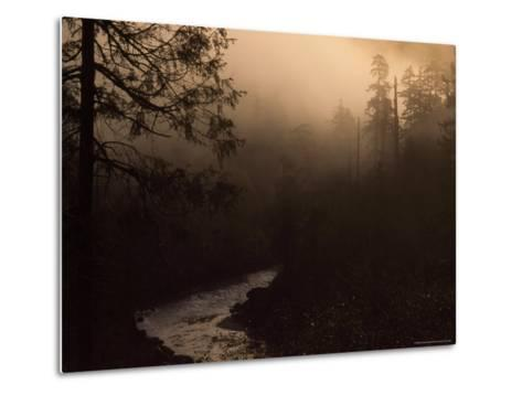 South Fork of Smith River at Sunrise, California-Phil Schermeister-Metal Print