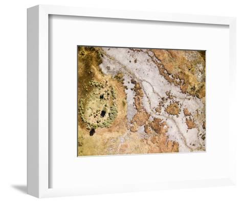 Wetlands Along the Okavango River in the Caprivi Strip, Botswana-Michael Fay-Framed Art Print
