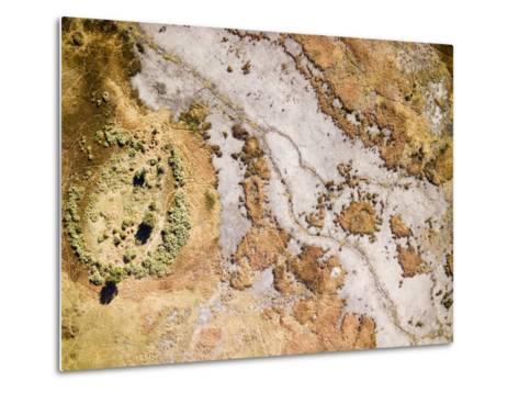 Wetlands Along the Okavango River in the Caprivi Strip, Botswana-Michael Fay-Metal Print