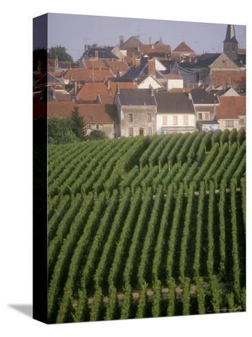 Vineyards in the Champagne Region, France-Michael S^ Lewis-Stretched Canvas Print