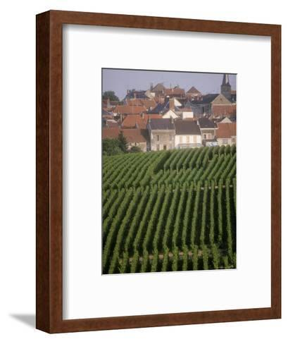 Vineyards in the Champagne Region, France-Michael S^ Lewis-Framed Art Print