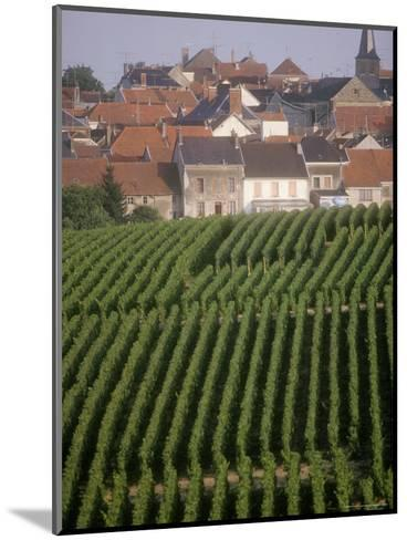 Vineyards in the Champagne Region, France-Michael S^ Lewis-Mounted Photographic Print