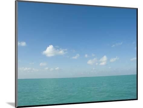 White Puffy Clouds above Turquoise Blue Caribbean Water, Ambergris Caye, Belize-James Forte-Mounted Photographic Print