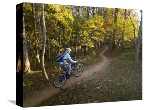 Woman Mountain Biker Rides Singletrack Trail Through Woods-Skip Brown-Stretched Canvas Print