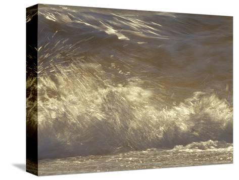 Waves Breaking Onto a Beach Turn Golden at Sunset, Coorong National Park, Australia-Jason Edwards-Stretched Canvas Print