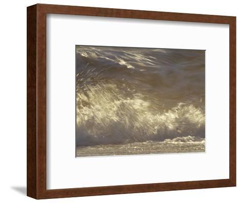 Waves Breaking Onto a Beach Turn Golden at Sunset, Coorong National Park, Australia-Jason Edwards-Framed Art Print