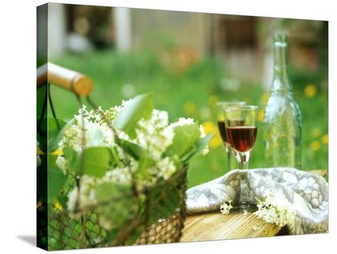 Two Glasses of Red Wine in Springtime Garden-Christine Gill?-Stretched Canvas Print