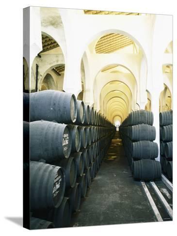 La Mezquita Winery (Jerez de la Frontera, Spain)-Hendrik Holler-Stretched Canvas Print
