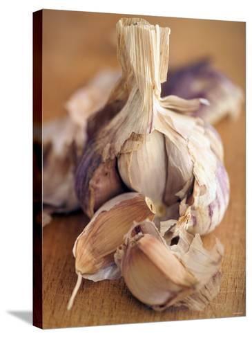 A Dried Garlic Bulb-Steven Morris-Stretched Canvas Print