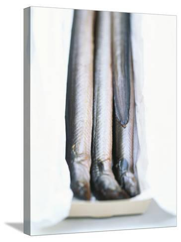 Four Smoked Eels in a Box-Peter Medilek-Stretched Canvas Print