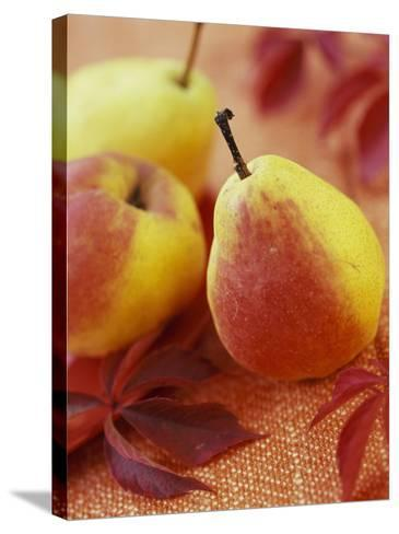 Three Pears-Vladimir Shulevsky-Stretched Canvas Print