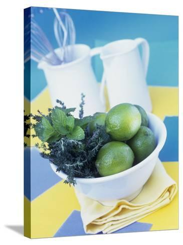 Limes, Mint and Thyme in a Bowl-Linda Burgess-Stretched Canvas Print