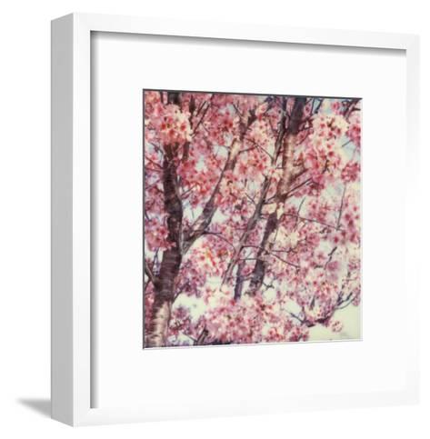 Cherry Tree-Claire Rydell-Framed Art Print