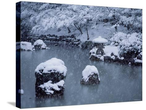 Maruyama Park--Stretched Canvas Print