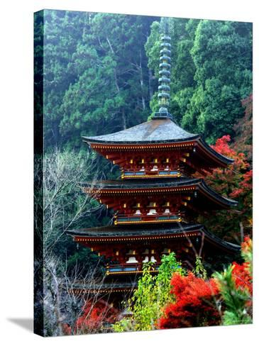 Autumn Leaves at Hase Temple--Stretched Canvas Print