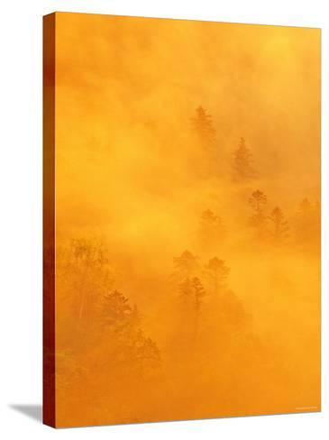 Morning View from Tsubetu Pass--Stretched Canvas Print
