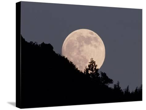 Full Moon--Stretched Canvas Print