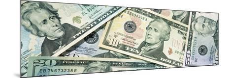 Dollar Bills--Mounted Photographic Print