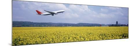 Airplane Taking Off, Zurich Airport, Kloten, Zurich, Switzerland--Mounted Photographic Print