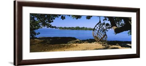 Rope Swing Hanging from a Tree on the Beach, Negril, Jamaica--Framed Art Print