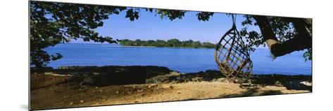 Rope Swing Hanging from a Tree on the Beach, Negril, Jamaica--Mounted Photographic Print