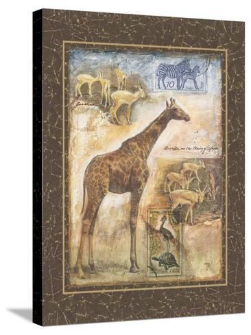 On Safari II-Tina Chaden-Stretched Canvas Print