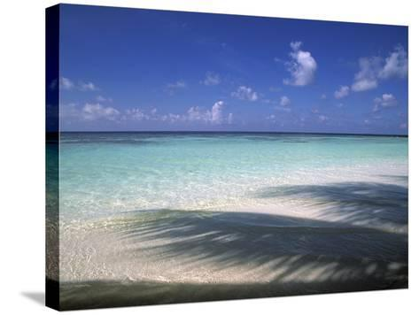 Tropical Beach at Maldives, Indian Ocean-Jon Arnold-Stretched Canvas Print