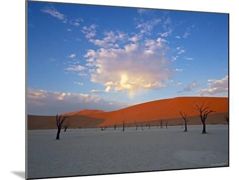 Red dunes and dead acacia tree, Dead Vlei, Namib-Naukluft-Sossusvlei, Namibia-Gavin Hellier-Mounted Photographic Print