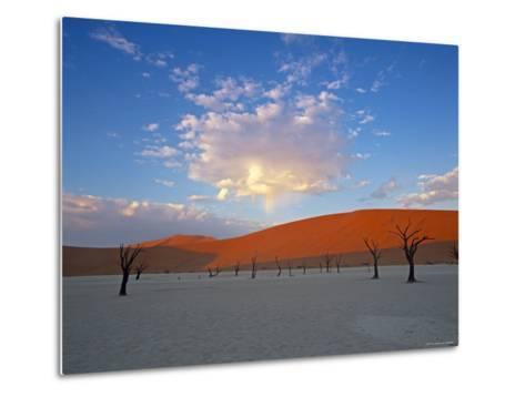 Red dunes and dead acacia tree, Dead Vlei, Namib-Naukluft-Sossusvlei, Namibia-Gavin Hellier-Metal Print