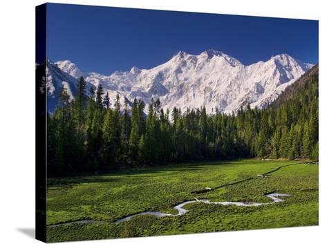 Nanga Parbat, from Fairy Meadows, Diamir District, Pakistan-Michele Falzone-Stretched Canvas Print