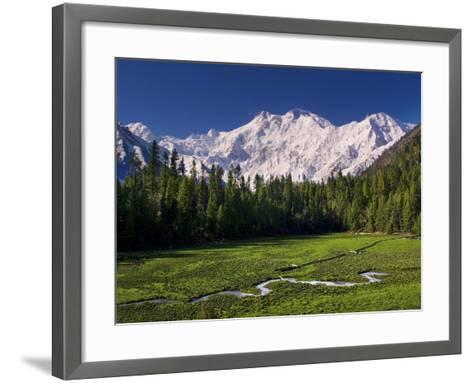 Nanga Parbat, from Fairy Meadows, Diamir District, Pakistan-Michele Falzone-Framed Art Print