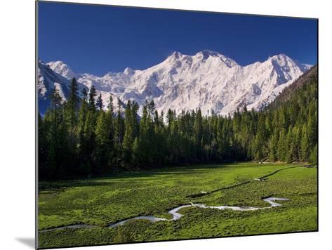 Nanga Parbat, from Fairy Meadows, Diamir District, Pakistan-Michele Falzone-Mounted Photographic Print