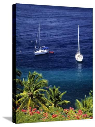 Anse Chastanet, St. Lucia, Caribbean-Walter Bibikow-Stretched Canvas Print