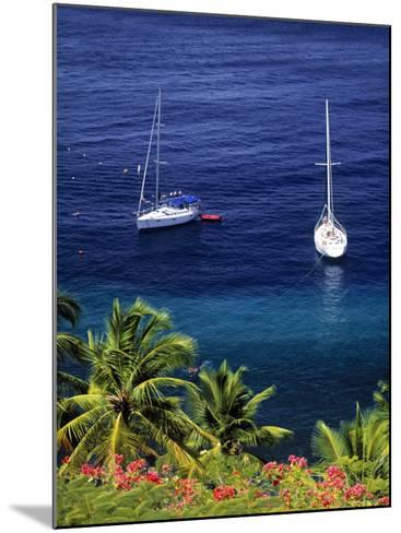 Anse Chastanet, St. Lucia, Caribbean-Walter Bibikow-Mounted Photographic Print