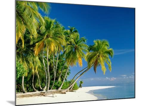 Palm Trees and Tropical Beach, Maldive Islands, Indian Ocean-Steve Vidler-Mounted Photographic Print