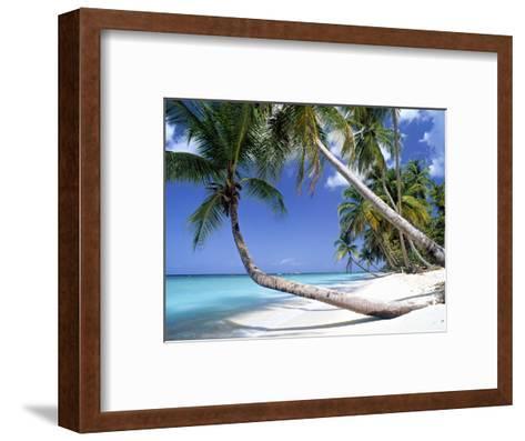 Pigeon Point, Tobago, Trinidad and Tobago-Peter Adams-Framed Art Print