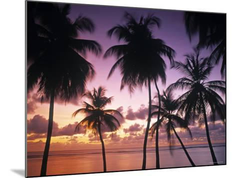 Pigeon Point, Tobago, Trinidad and Tobago-Peter Adams-Mounted Photographic Print