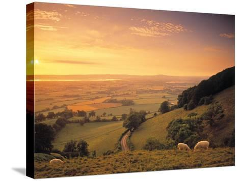 Coaley Peak, Dursley, Cotswolds, England-Peter Adams-Stretched Canvas Print