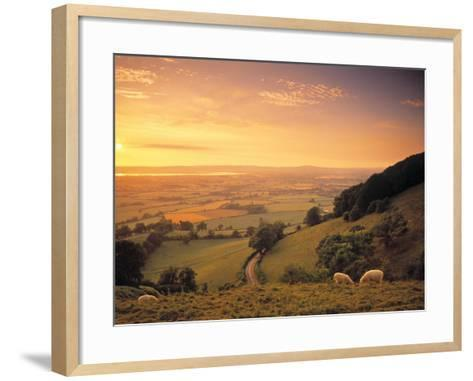 Coaley Peak, Dursley, Cotswolds, England-Peter Adams-Framed Art Print