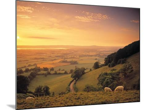 Coaley Peak, Dursley, Cotswolds, England-Peter Adams-Mounted Photographic Print