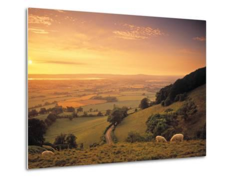 Coaley Peak, Dursley, Cotswolds, England-Peter Adams-Metal Print