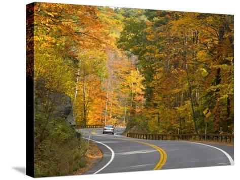 Road Nr. Lake George, New York State, USA-Demetrio Carrasco-Stretched Canvas Print