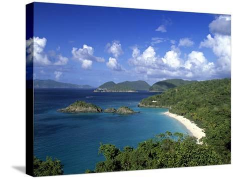 Trunk Bay, St. John, Us Virgin Islands, Caribbean-Walter Bibikow-Stretched Canvas Print