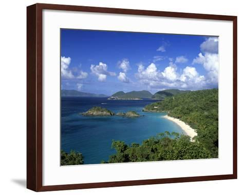 Trunk Bay, St. John, Us Virgin Islands, Caribbean-Walter Bibikow-Framed Art Print