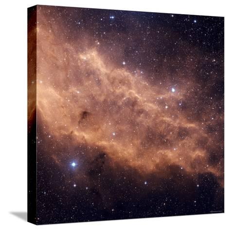 California Nebula-Stocktrek Images-Stretched Canvas Print