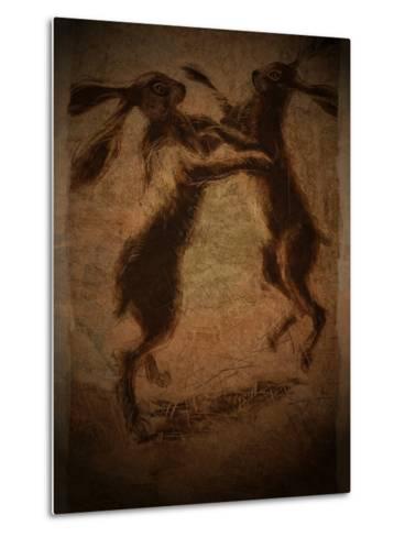 Hare Boxing-Tim Kahane-Metal Print