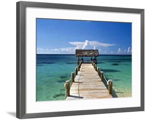 Providence Island, Bahamas, Caribbean-Peter Adams-Framed Art Print