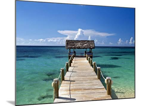 Providence Island, Bahamas, Caribbean-Peter Adams-Mounted Photographic Print