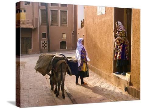 Woman and Her Donkey, Abyaneh Near Kashan, Isfahan Province, Iran-Michele Falzone-Stretched Canvas Print