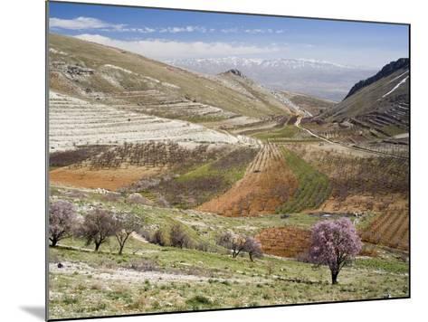 Niha, Bekaa Valley, Lebanon-Ivan Vdovin-Mounted Photographic Print